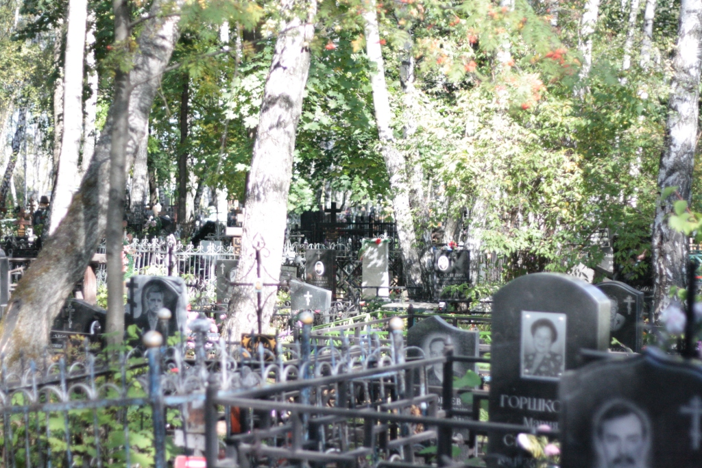 Владыкинское кладбище3.JPG
