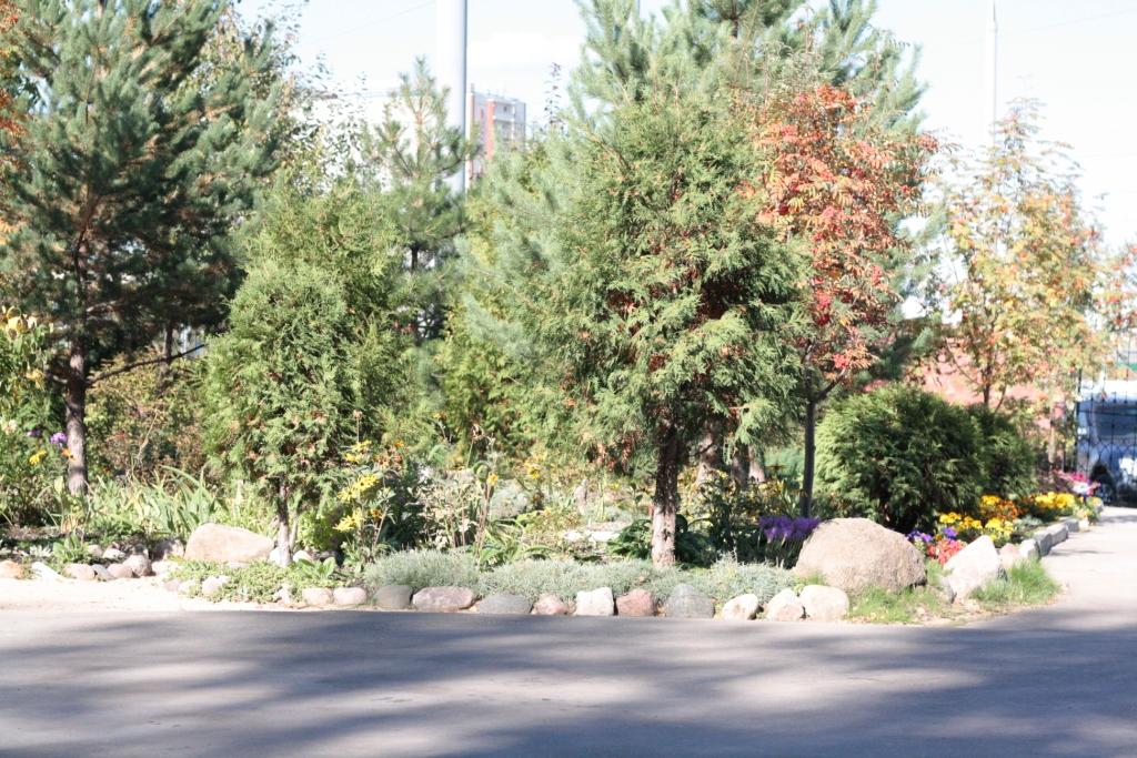 Владыкинское кладбище1.JPG